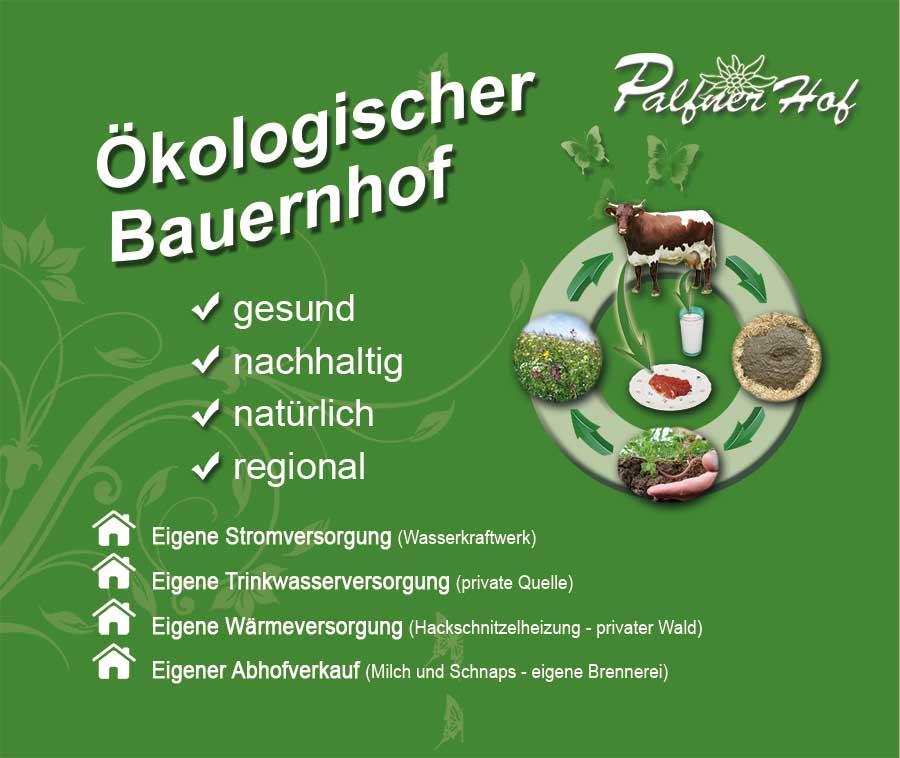palfner-hof-oekologischer-bauernhof